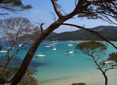 France Côte d'Azur