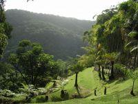 France d'Outre-Mer Martinique, Jardin de Balata en Martinique